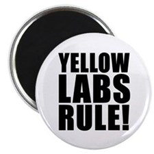 """Yellow Labs Rule! 2.25"""" Magnet (100 pack)"""