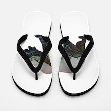BEAR Flip Flops
