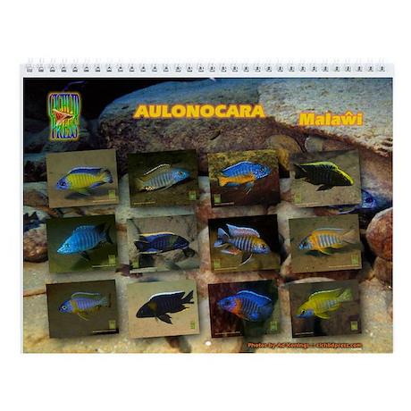 Aulonocara Wall Calendar