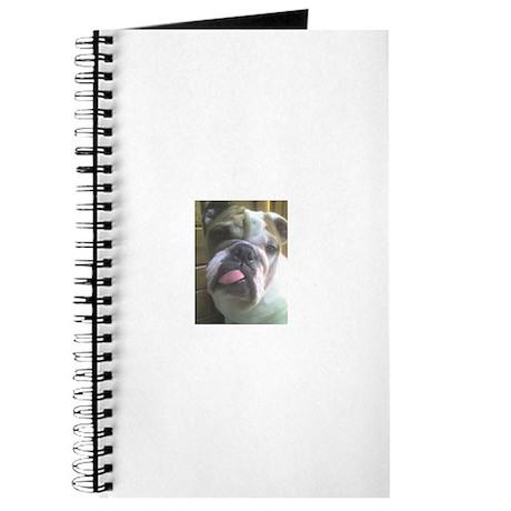 Bulldogs Journal