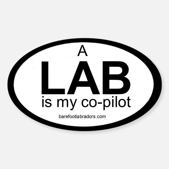 LAB co-pilot sticker Oval Decal