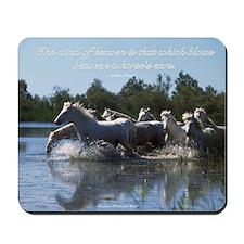Horses w/ Proverb Mousepad