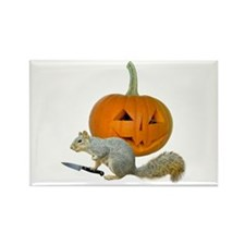 Squirrel Carving Pumpkin Rectangle Magnet