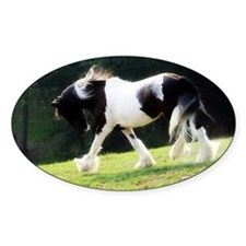 Gypsy Vanner Oval Decal
