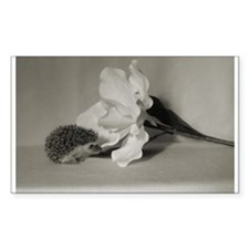 Black and White Hedgehog Rectangle Decal