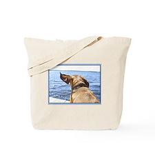 Cute Dachshund photograph Tote Bag