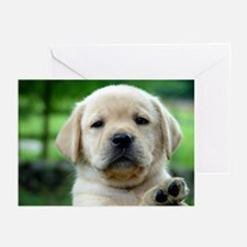 Bard Blue0-A Greeting Cards (Pk of 10)
