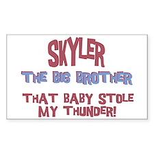 Skyler - Stole My Thunder Rectangle Decal