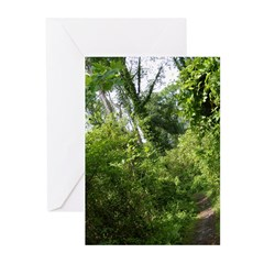 Mary Ewbank Greeting Cards (Pk of 20)