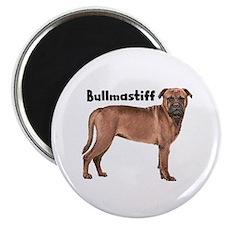 Bullmastiff Magnet