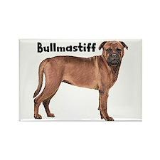Bullmastiff Rectangle Magnet