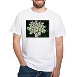 Carley Pennecke White T-Shirt