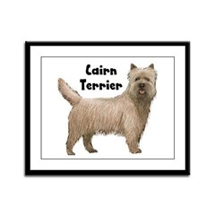 Cairn Terrier Framed Panel Print