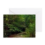 Carley Pennecke Greeting Cards (Pk of 20)