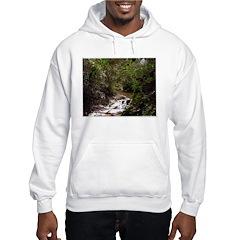 Madison Perry Hooded Sweatshirt
