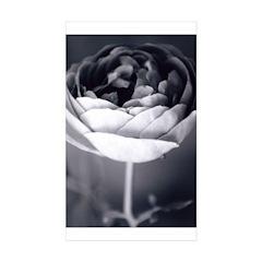 Ashley Fielden Rectangle Sticker 50 pk)