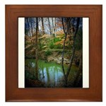 Melissa Staggs Framed Tile