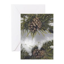 Pinecone in Snow Greeting Cards (Pk of 10)