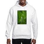 Kerri Killion Wright Hooded Sweatshirt