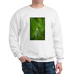 Kerri Killion Wright Sweatshirt