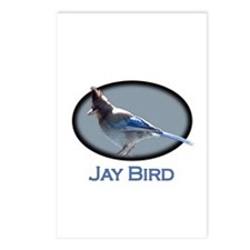Jay Bird Postcards (Package of 8)
