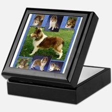 TLC OASIS SHELTIES Keepsake Box