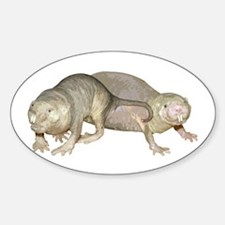 Naked Mole Rats Decal
