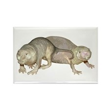 Naked Mole Rats Rectangle Magnet