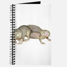 Naked Mole Rats Journal