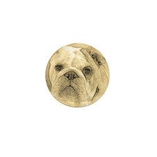 Bulldog Mini Button (10 pack)
