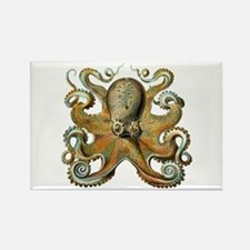 Octopus Rectangle Magnet