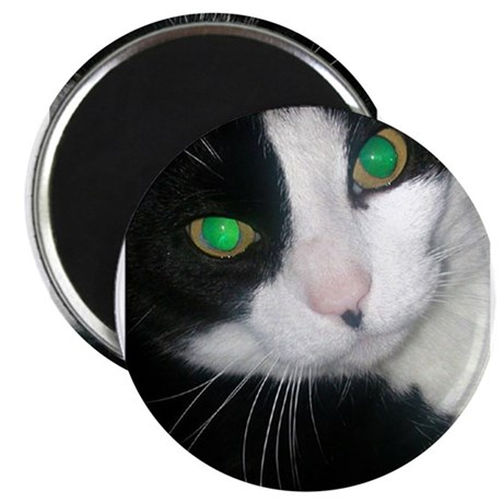 "Cat 2.25"" Magnet (100 pack)"