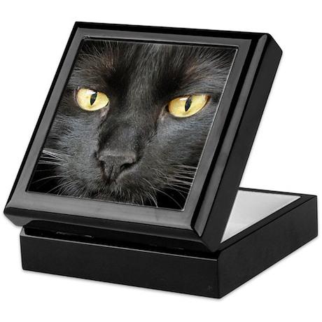 Dangerously Beautiful Black Cat Keepsake Box