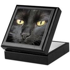 Dangerously Beautiful Black Cat Keepsake Box