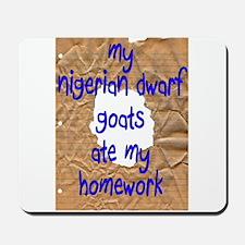 Nigerians Ate My Homework Mousepad