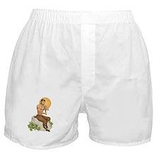 Satyr Playing Pan Pipes Boxer Shorts
