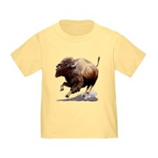 Our Bison T