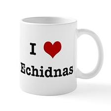 I love Echidnas Mug