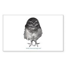 Baby burrowing owl Rectangle Decal
