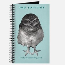Baby burrowing owl Journal