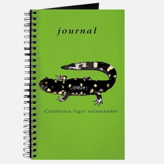 California tiger salamander Journal