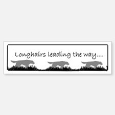 Longhairs Leading the way bumper Bumper Bumper Sticker