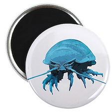 Giant Isopod Magnet