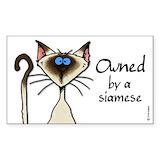 Siamese cat Single