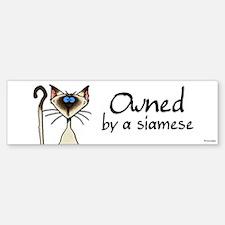 owned by a siamese Bumper Bumper Bumper Sticker