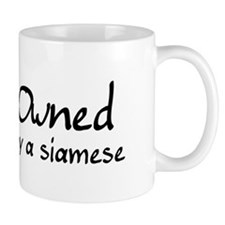 owned by a siamese Mug