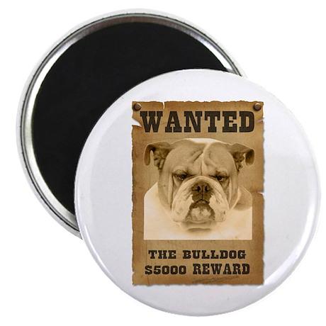 """""""Wanted"""" Bulldog Magnet"""