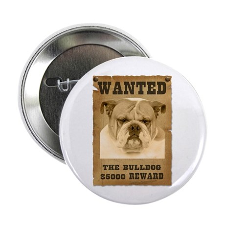 """Wanted"" Bulldog 2.25"" Button (10 pack)"