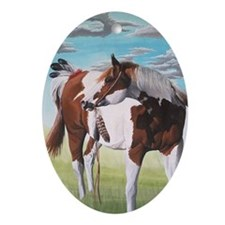 native american paint horse Ornament (Oval)