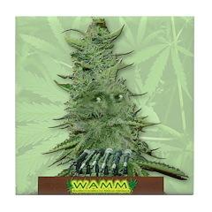WAMM Green Bob Tile Coaster